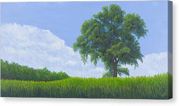 Alone Summer Canvas Print by Garry McMichael