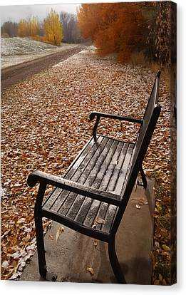 Alone With Autumn Canvas Print by Steven Milner