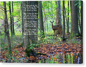 Canvas Print featuring the digital art Alone With God by Lorna Rogers Photography
