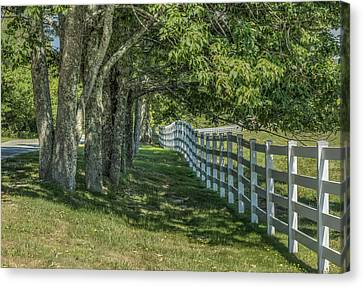 Canvas Print featuring the photograph Along A Country Road by Jane Luxton
