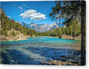 Along The Bow River Canvas Print by Bob and Nancy Kendrick