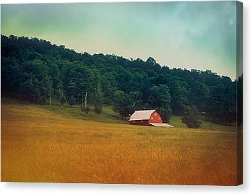 Along A Country Road Canvas Print by Shane Holsclaw