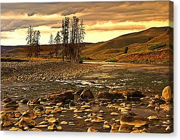 Along The Larmar River Canvas Print by Marty Koch