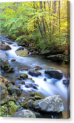 Along The Oconaluftee River Canvas Print by Andres Leon