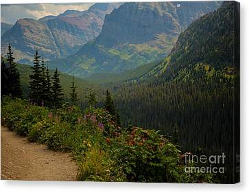 Along The Path To Iceburg Lake 21 Canvas Print by Natural Focal Point Photography