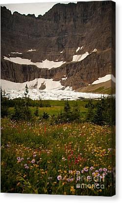 Along The Path To Iceburg Lake 9 Canvas Print