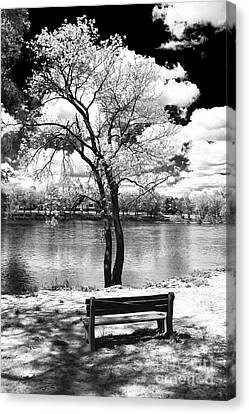 Benches Canvas Print - Along The River by John Rizzuto