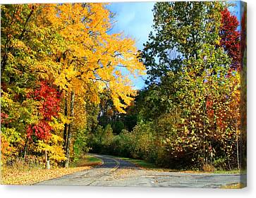 Canvas Print featuring the photograph Along The Road 2 by Kathryn Meyer