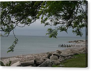 Canvas Print featuring the photograph Along The Shore by Kay Novy