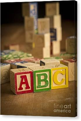 Alphabet Blocks Canvas Print by Edward Fielding