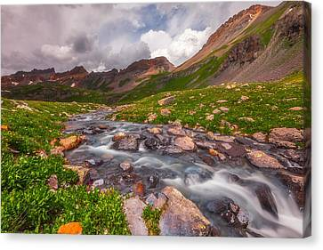 Alpine Creek Canvas Print by Darren  White