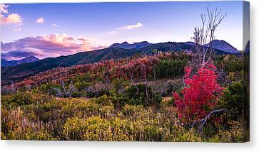 Alpine Fall Canvas Print by Chad Dutson