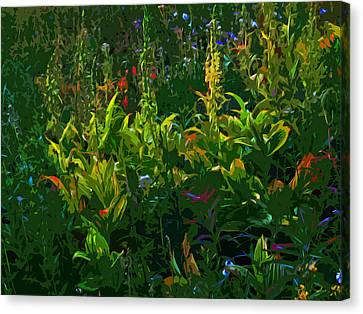 Alpine Flowers Canvas Print by Anne Havard