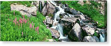 Prospector Canvas Print - Alpine Garden Near Cascade Waterfall by Panoramic Images
