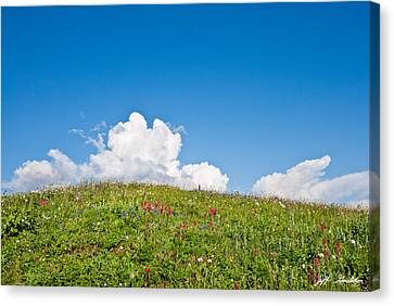 Alpine Meadow And Cloud Formation Canvas Print