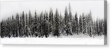 Winter Scene // Whitefish, Montana  Canvas Print by Nicholas Parker