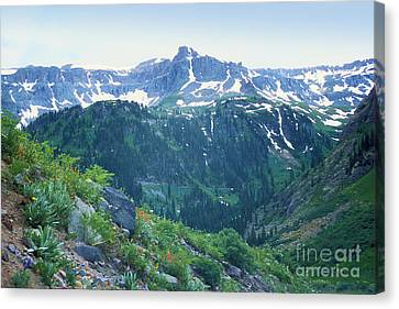 Alpine Vista Near Durango Canvas Print