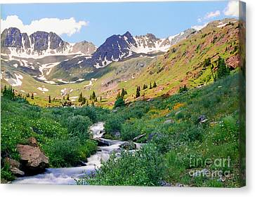 Alpine Vista With Wildflowers Canvas Print
