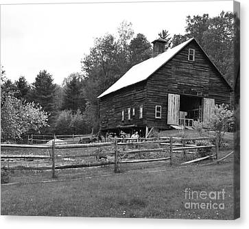 Alstead Barn Canvas Print