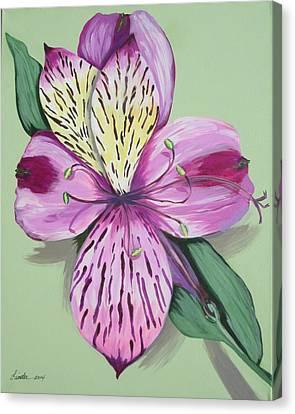 Alstroemeria No.1 Canvas Print