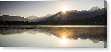 Ducklings Canvas Print - Alta Double Diamond by Aaron Bedell