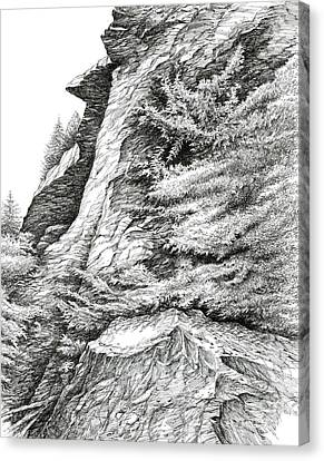 Alum Bluff Trail Crag Canvas Print by Bob  George