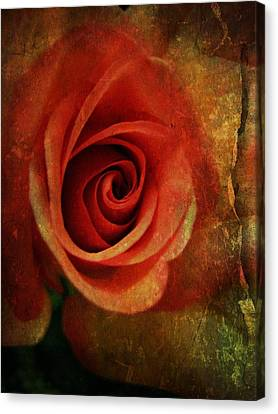 Always Be My Dream Canvas Print by Shirley Sirois