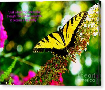 Always Hope - Butterfly Canvas Print by Shelia Kempf