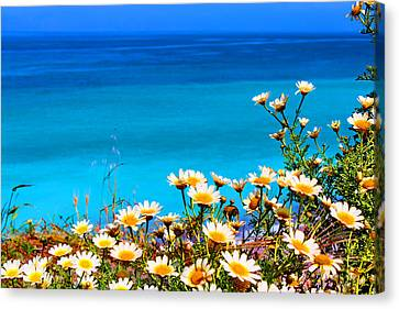 Seascapes Canvas Print - Am I In Heaven by Julia Fine Art And Photography