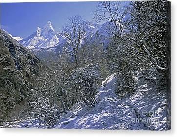 Canvas Print featuring the photograph Ama Dablam In Winter by Rudi Prott
