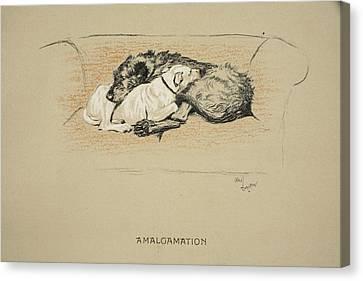 Amalgamation, 1930, 1st Edition Canvas Print by Cecil Charles Windsor Aldin