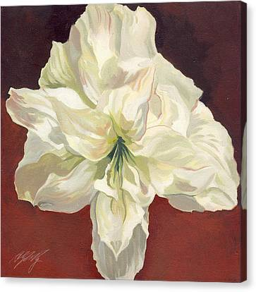 Amaryllis With Red Canvas Print by Alfred Ng