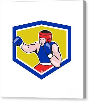 Amateur Boxer Boxing Shield Cartoon Canvas Print by Aloysius Patrimonio