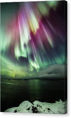 Amazing Auroras Canvas Print