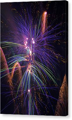 Amazing Beautiful Fireworks Canvas Print by Garry Gay