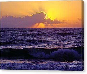 Amazing - Florida - Sunrise Canvas Print by D Hackett