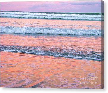 Amazing Pink Sunset Canvas Print by Michele Penner