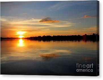 Canvas Print featuring the photograph Amazon Sunset by Nareeta Martin