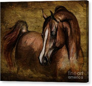 Amber  Canvas Print by Angel  Tarantella