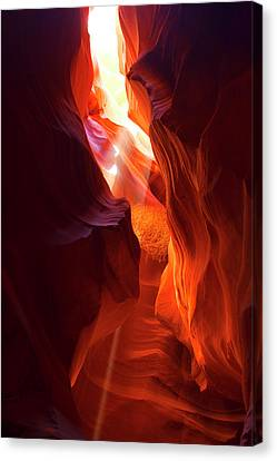 Canvas Print featuring the photograph Amber Light by Tom Kelly