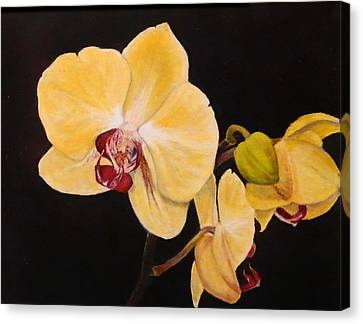 Canvas Print featuring the painting Amber Orchids by Sandra Nardone