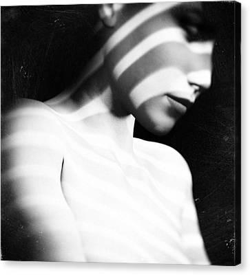 Zebra Art Canvas Print - Amber by Taylan Apukovska