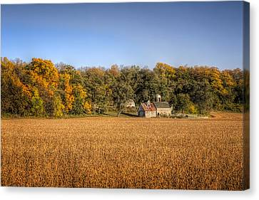 Amber Waves Of Grain Canvas Print by Jeff Burton