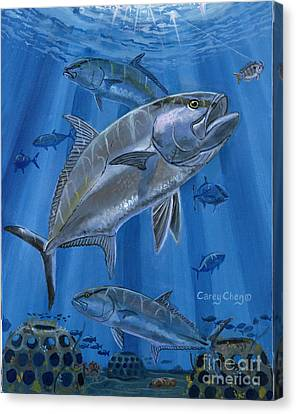 Amberjack In0029 Canvas Print by Carey Chen