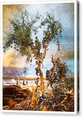 Canvas Print featuring the photograph Amboy Shoe Tree by Steve Benefiel