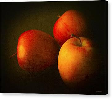Ambrosia Apples Canvas Print