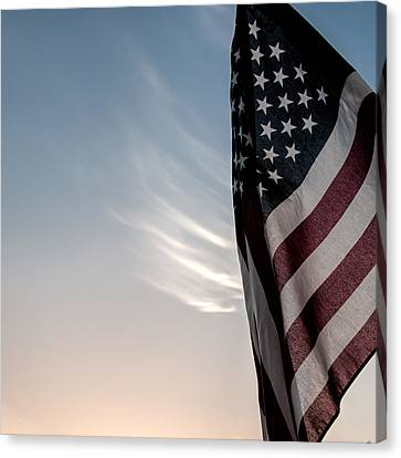 America Canvas Print by Peter Tellone