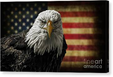 American Bald Eagle On Grunge Flag Canvas Print