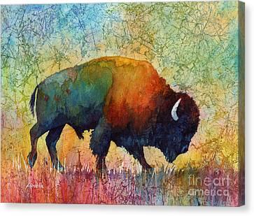 American Buffalo 4 Canvas Print by Hailey E Herrera