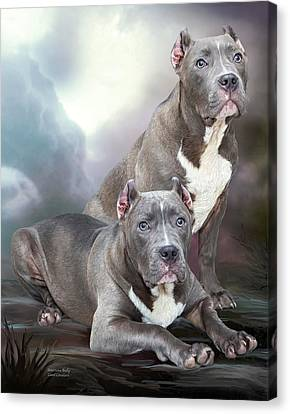 American Bully Canvas Print